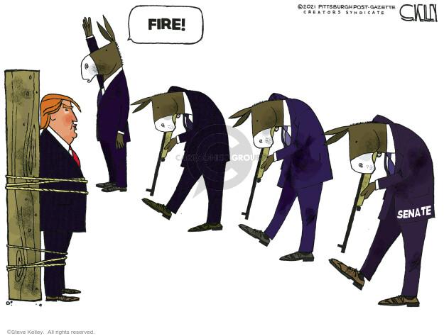 Steve Kelley  Steve Kelley's Editorial Cartoons 2021-01-25 democrat