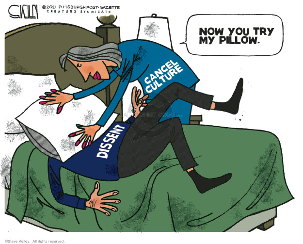 Steve Kelley  Steve Kelley's Editorial Cartoons 2021-01-29 editorial