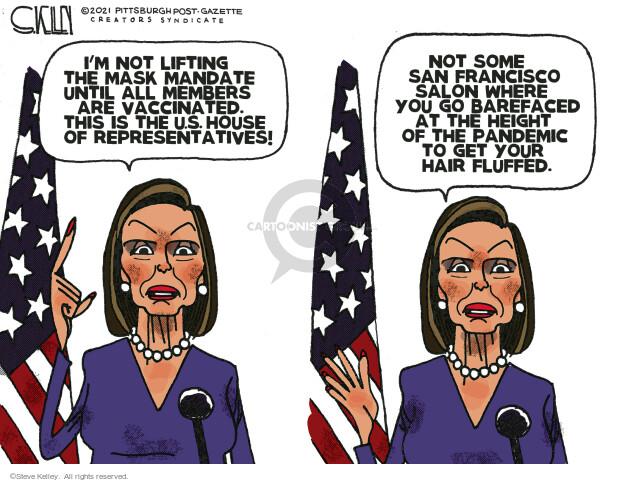 Steve Kelley  Steve Kelley's Editorial Cartoons 2021-05-23 democrat
