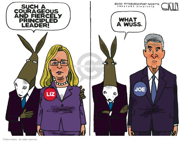 Steve Kelley  Steve Kelley's Editorial Cartoons 2021-06-11 democrat