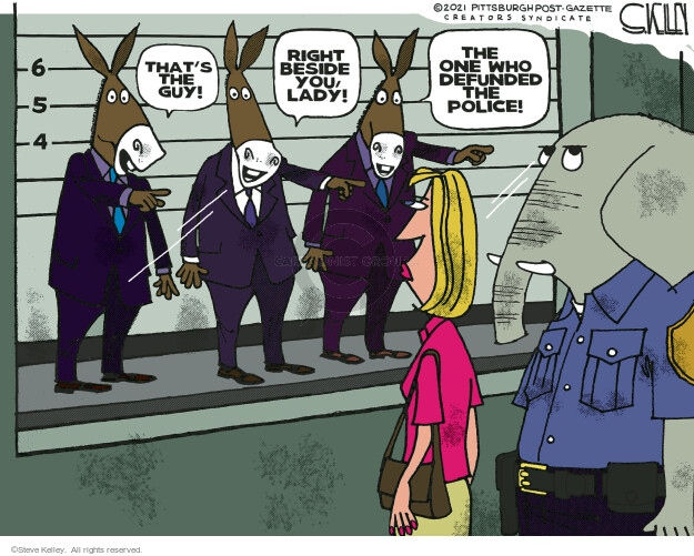 Steve Kelley  Steve Kelley's Editorial Cartoons 2021-07-02 democrat