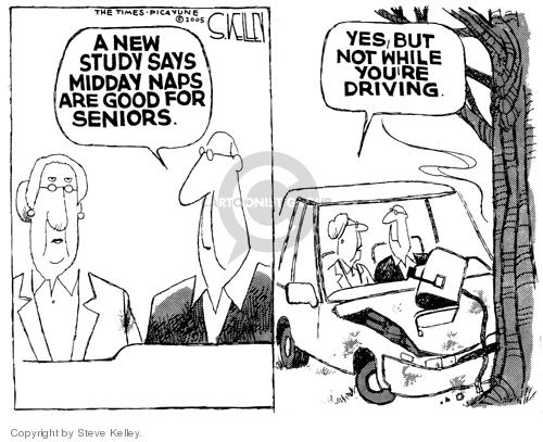 Steve Kelley  Steve Kelley's Editorial Cartoons 2005-01-17 auto