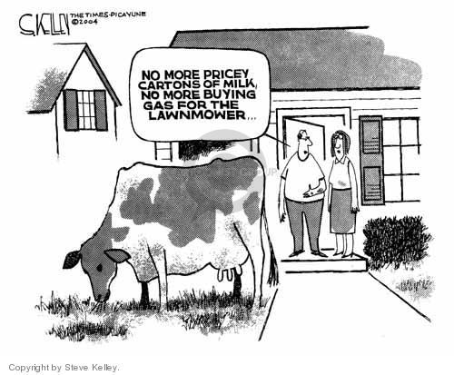Steve Kelley  Steve Kelley's Editorial Cartoons 2004-06-01 value