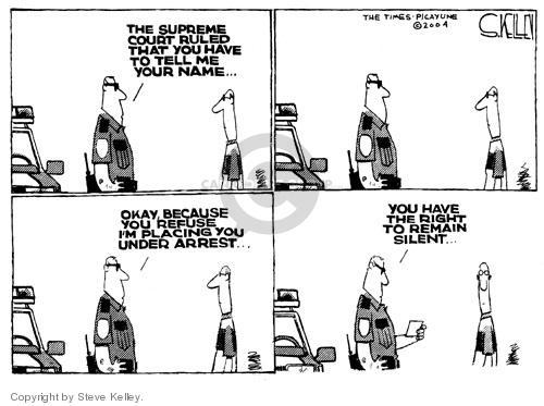 Steve Kelley  Steve Kelley's Editorial Cartoons 2004-06-23 policeman