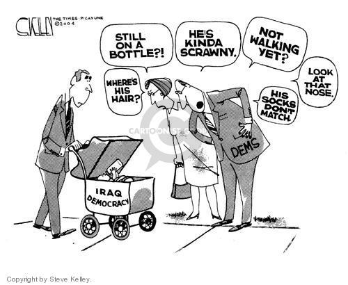Cartoonist Steve Kelley  Steve Kelley's Editorial Cartoons 2004-06-30 hair