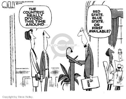 Steve Kelley  Steve Kelley's Editorial Cartoons 2004-08-04 blue