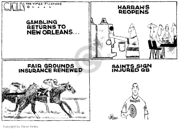 Cartoonist Steve Kelley  Steve Kelley's Editorial Cartoons 2006-03-17 player
