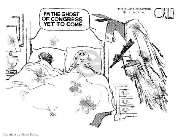 Steve Kelley  Steve Kelley's Editorial Cartoons 2006-12-11 branch of government