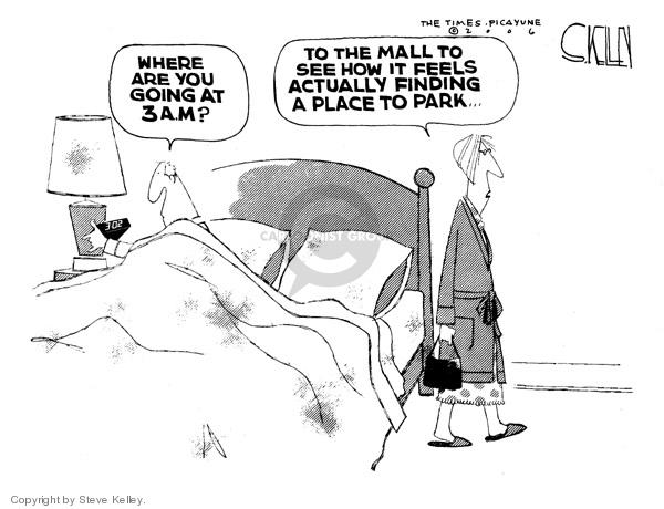 Steve Kelley  Steve Kelley's Editorial Cartoons 2006-12-27 3am