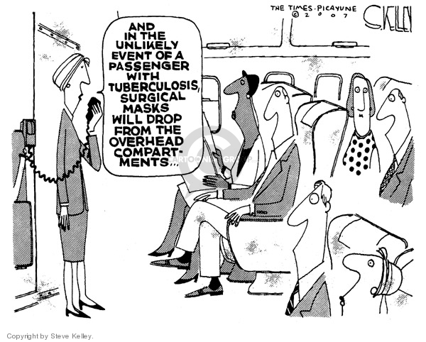 Steve Kelley  Steve Kelley's Editorial Cartoons 2007-06-01 airplane travel