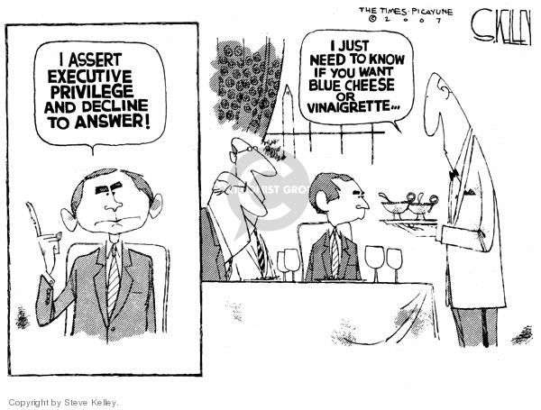 Steve Kelley  Steve Kelley's Editorial Cartoons 2007-07-11 branch of government