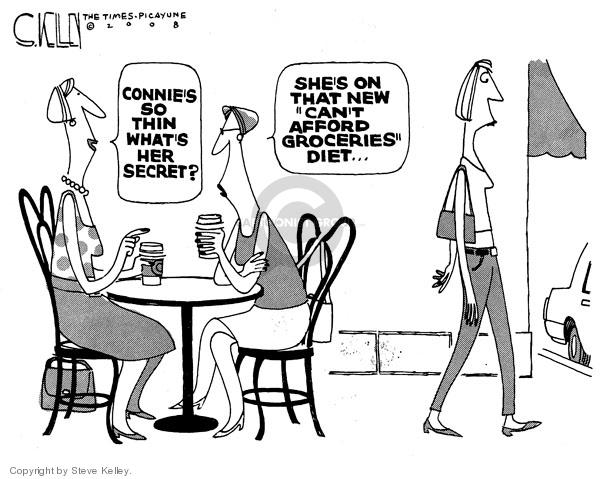 Steve Kelley  Steve Kelley's Editorial Cartoons 2008-05-02 price
