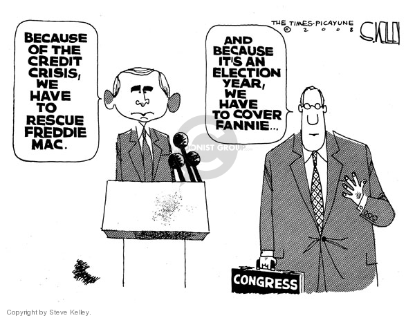 Steve Kelley  Steve Kelley's Editorial Cartoons 2008-07-15 congressperson