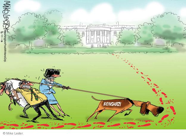 Cartoonist Mike Lester  Mike Lester's Editorial Cartoons 2013-05-11 Washington, DC