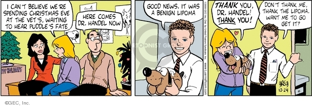 Comic Strip Greg Evans  Luann 2008-12-24 pets animals