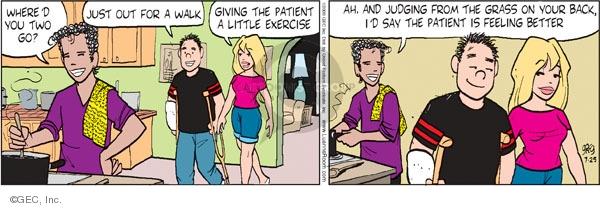Comic Strip Greg Evans  Luann 2009-07-25 two friends