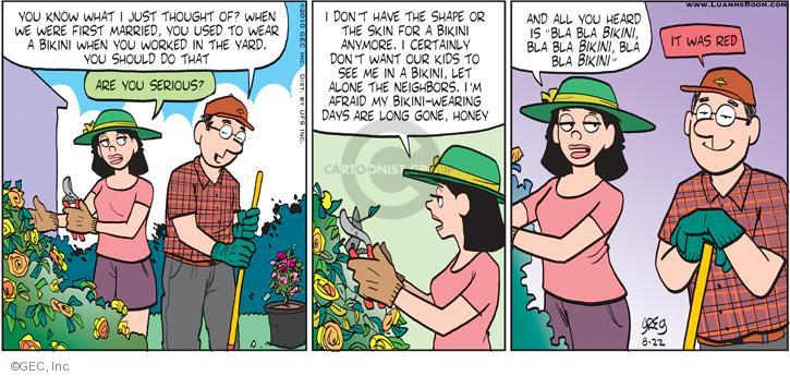 Comic Strip Greg Evans  Luann 2010-08-22 married couple