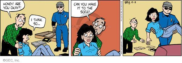 Comic Strip Greg Evans  Luann 2010-12-08 sofa