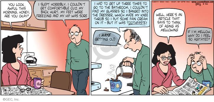 Comic Strip Greg Evans  Luann 2011-02-20 comfort