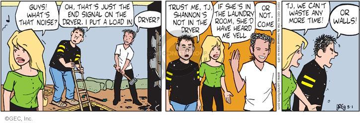 Comic Strip Greg Evans  Luann 2012-05-01 laundry room
