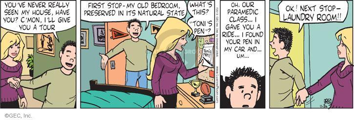 Comic Strip Greg Evans  Luann 2013-11-26 laundry