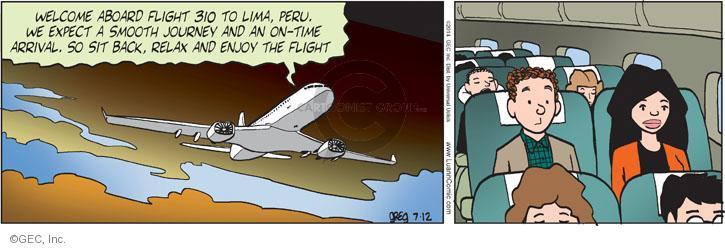 Comic Strip Greg Evans  Luann 2014-07-12 expect