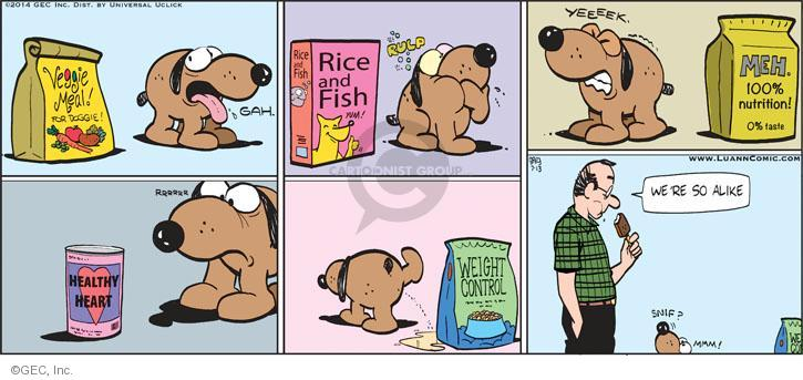 Comic Strip Greg Evans  Luann 2014-07-13 fish