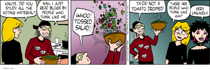 Comic Strip Greg Evans  Luann 2014-11-14 drop
