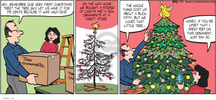 Comic Strip Greg Evans  Luann 2014-11-30 store