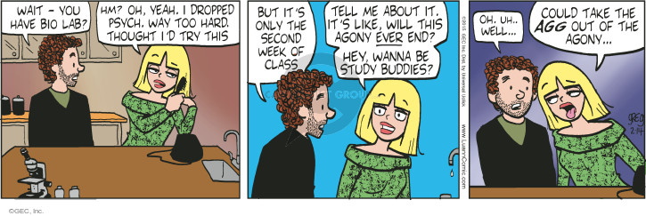Comic Strip Greg Evans  Luann 2015-02-14 study