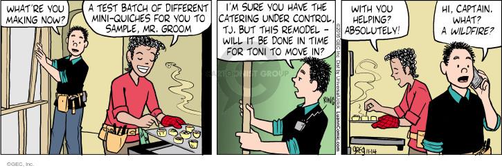 Comic Strip Greg Evans  Luann 2016-11-14 wildfire