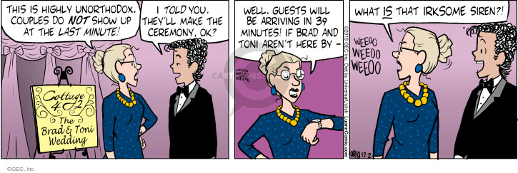 Comic Strip Greg Evans  Luann 2016-12-02 wedding ceremony
