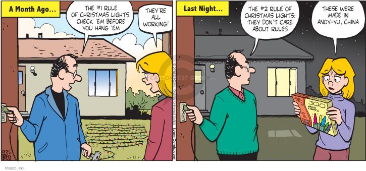 Comic Strip Greg Evans  Luann 2016-12-25 care