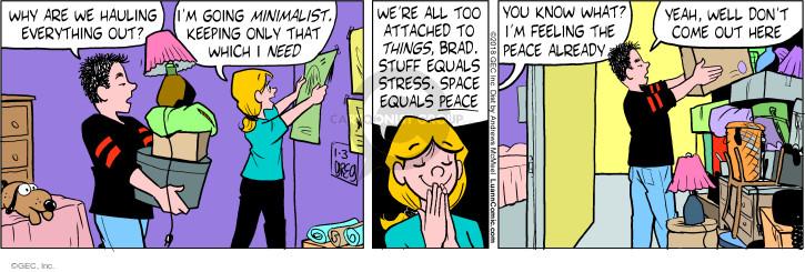 Comic Strip Greg Evans  Luann 2018-01-03 thing