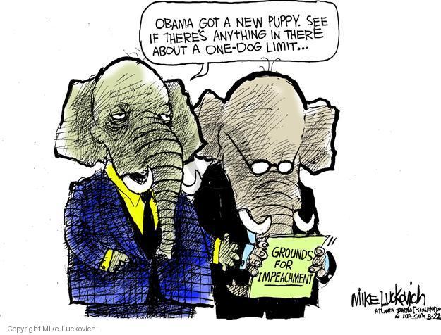 Mike Luckovich  Mike Luckovich's Editorial Cartoons 2013-08-22 republican politician