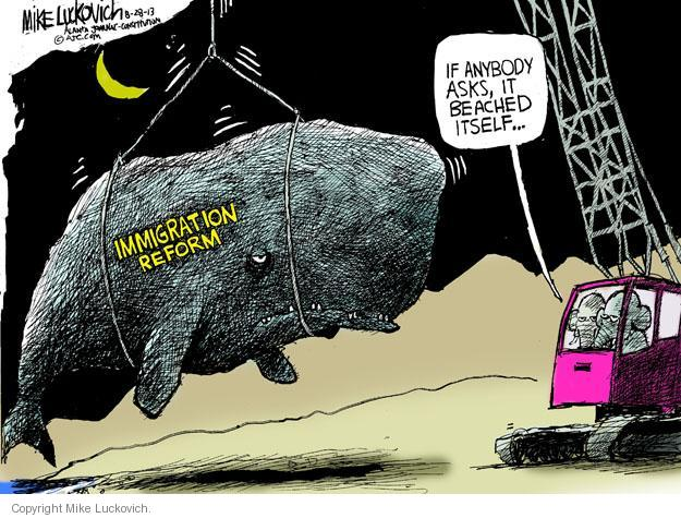 Mike Luckovich  Mike Luckovich's Editorial Cartoons 2013-08-28 immigration bill
