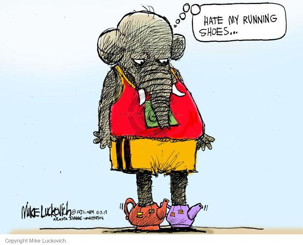 Cartoonist Mike Luckovich  Mike Luckovich's Editorial Cartoons 2013-11-07 election