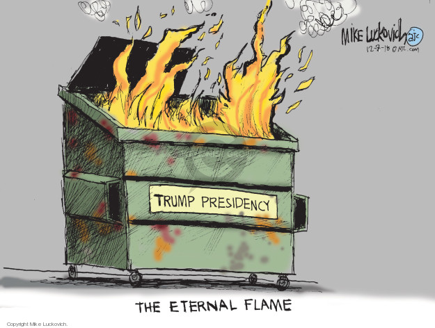 Cartoonist Mike Luckovich  Mike Luckovich's Editorial Cartoons 2018-12-02 Trump administration