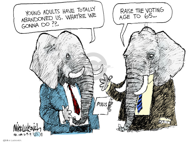 Mike Luckovich  Mike Luckovich's Editorial Cartoons 2019-06-09 voter