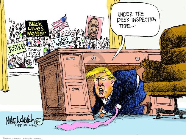 Mike Luckovich  Mike Luckovich's Editorial Cartoons 2020-06-04 Donald Trump