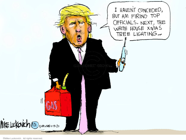 Mike Luckovich  Mike Luckovich's Editorial Cartoons 2020-11-13 republican politician