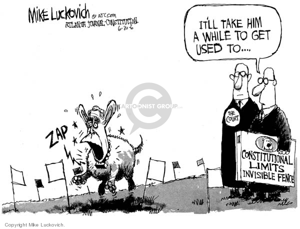 Cartoonist Mike Luckovich  Mike Luckovich's Editorial Cartoons 2006-06-30 Constitution