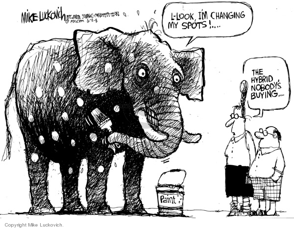 Mike Luckovich  Mike Luckovich's Editorial Cartoons 2008-06-11 buy
