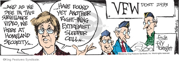 The fried fish comics and cartoons the cartoonist group for Vfw fish fry near me
