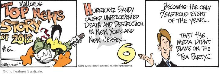 "Mallards Top News Story of 2012 #6 … Hurricane Sandy caused unprecedented death and destruction in New York and New Jersey … … Becoming the only disastrous event of the year … That the media didn't blame on the ""Tea Party"" …"