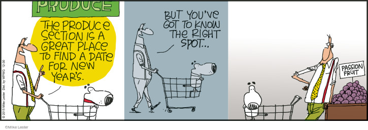 Cartoonist Mike Lester  Mike du Jour 2015-12-30 shopper