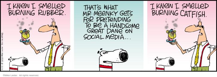 Comic Strip Mike Lester  Mike du Jour 2020-11-17 get