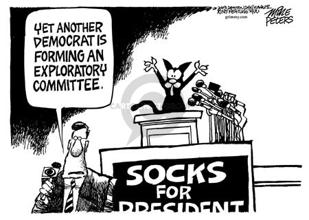 Yet another Democrat is forming an exploratory committee.  Socks for President.