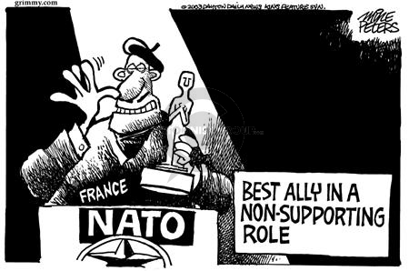 Cartoonist Mike Peters  Mike Peters' Editorial Cartoons 2003-02-15 France