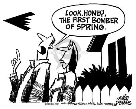 Cartoonist Mike Peters  Mike Peters' Editorial Cartoons 2003-03-15 airplane